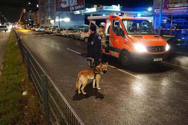 Um die Lage zu beruhigen wurden auch Hundeführer eingesetzt.