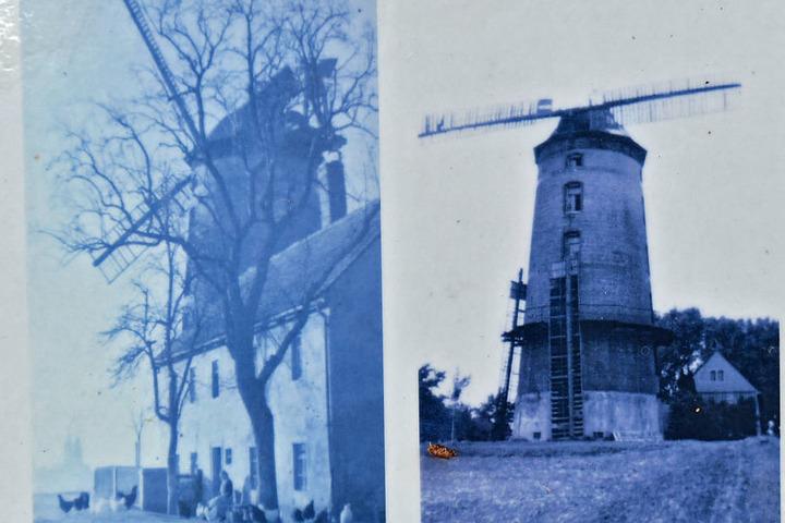 Bis 1945 stand auf dem Proschwitzer Bocksberg eine weithin sichtbare Holländerwindmühle.