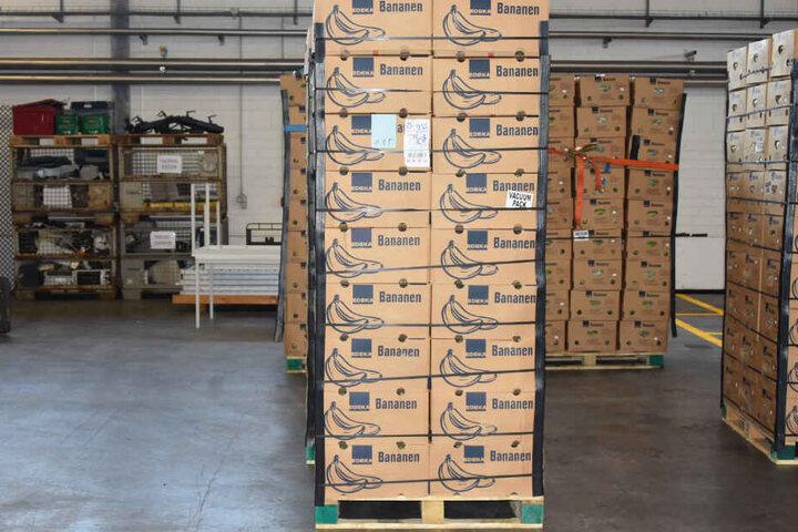Mehrere Paletten mit Bananenkartons voller Kokain stehen in einer Lagerhalle.
