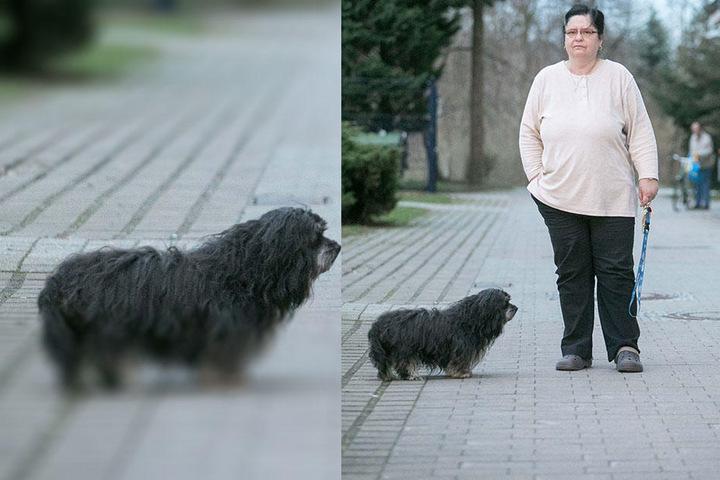 Noch immer macht sich Gertraud Jasiczek Sorgen um sich und Hündchen Teddy (11).