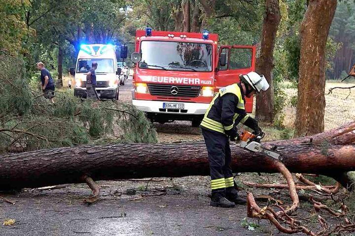 In der Nähe von Gardelegen (Sachsen-Anhalt) stürzten gleich mehrere Bäume auf eine Landstraße, schlossen Autofahrer und sogar einen Rettungswagen im Einsatz ein.