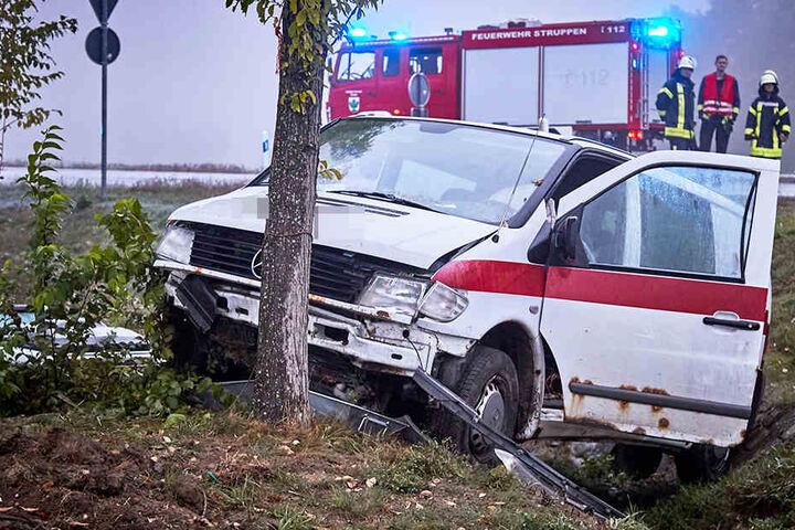 An einem Baum im Straßengraben kam der Transporter zum Stehen.