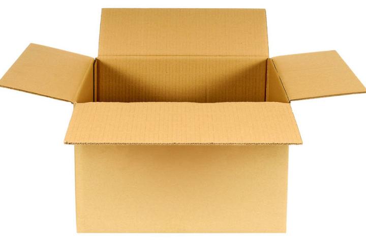 Die Katze kletterte aus Neugier in den Karton und wurde so versehentlich verschickt. (Symbolbild)