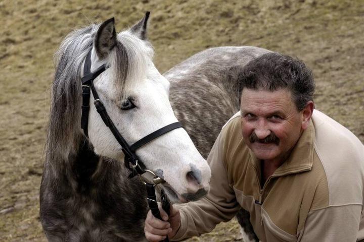 Ein großer Pferde-Mensch: Viele Jahrzehnte betreute Obersattelmeister Peter Müller (†75) Pferde und Lehrlinge in Moritzburg.