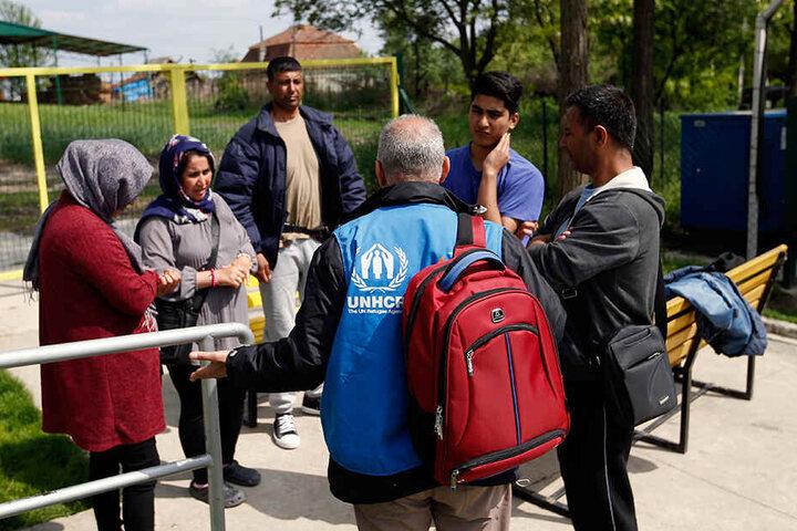 Eine Flüchtlingsfamilie, die von Serbien nach Ungarn abgeschoben werden soll.