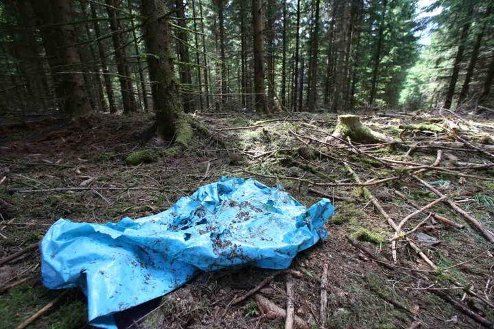 Die Skelettteile von Peggy wurden in einem Wald in Thüringen gefunden.