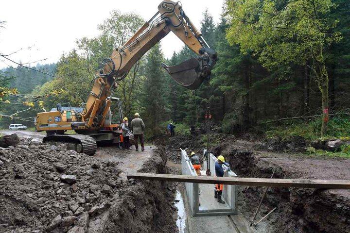 Der Kohlenbach im Thüringer Wald wird in seinen ursprünglichen Verlauf zurückgebaut.