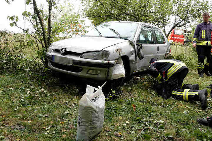 Der Peugeot kam erst im Gebüsch zum Stehen.