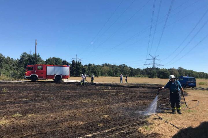 Mehrere Einsatzkräfte wässerten den Boden, um eine Ausbreitung des Brandes zu verhindern.