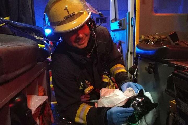 Feuerwehrmann und Notfallsanitäter Simon Wilke (32) hat die Katze vor den lodernden Flammen gerettet.