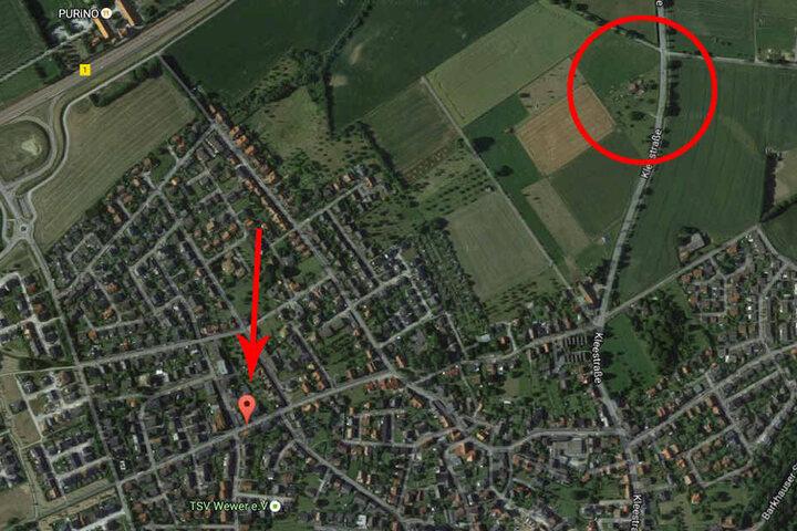 Vom roten Kreis aus startete die Herde mit ihrem Schäfer. Kurz darauf blockierten sie eine Straße.