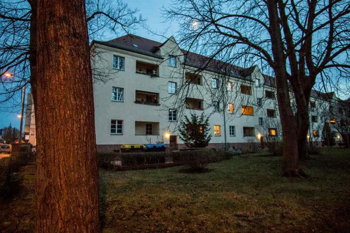 In diesem Kiez im Leipziger Süden wurden 2017 die ersten erschossenen Krähen gefunden.