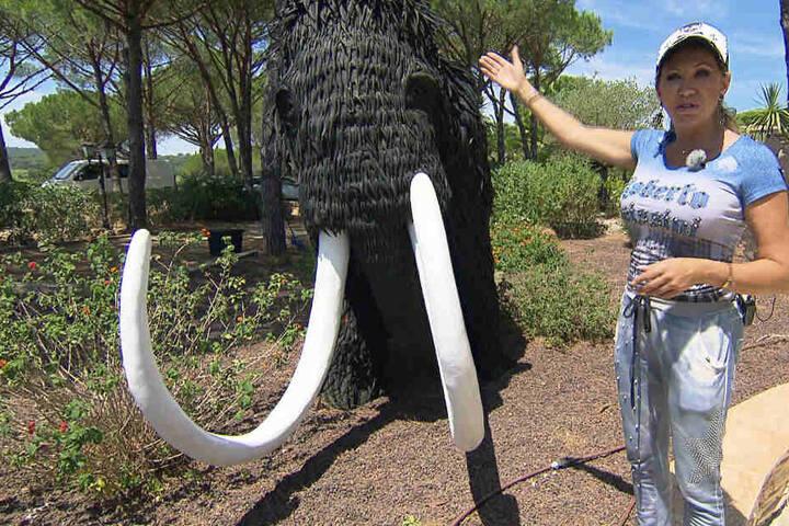 Neben dem Krokodil gehört auch dieser Elefant zu den gigantischen Skulpturen für den Garten der Villa Geissini.