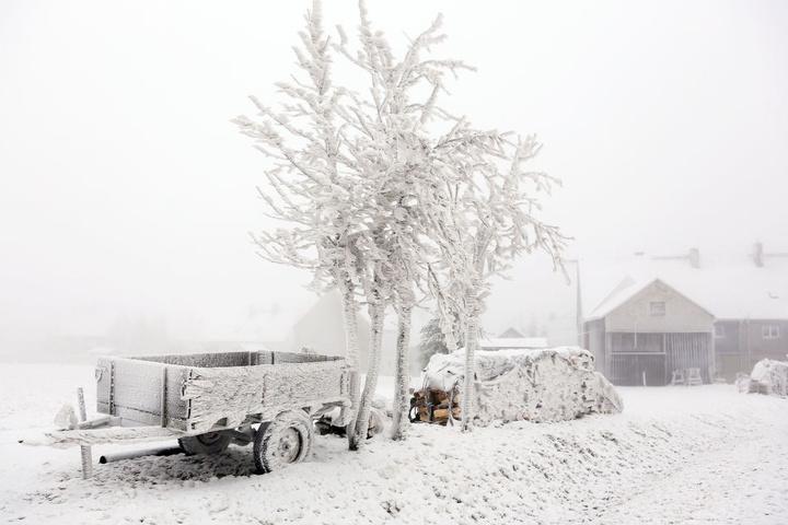 Bäume könnten durch die enorme Schneelast umstürzen.