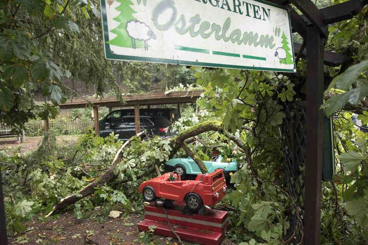 In Waschleithe stürzte ein Baum auf den Biergarten eines Hotels.