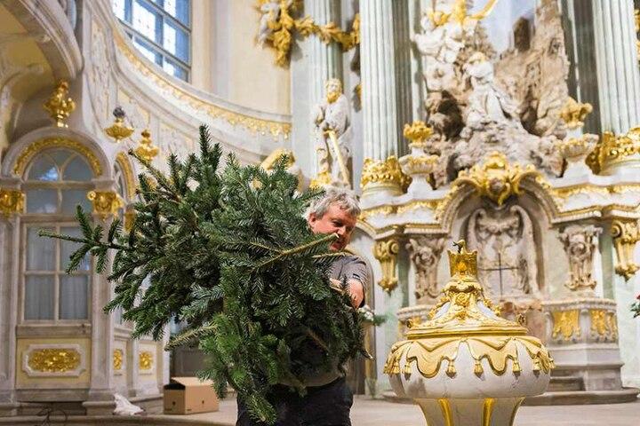Der Weihnachtsbaum wird entsorgt.