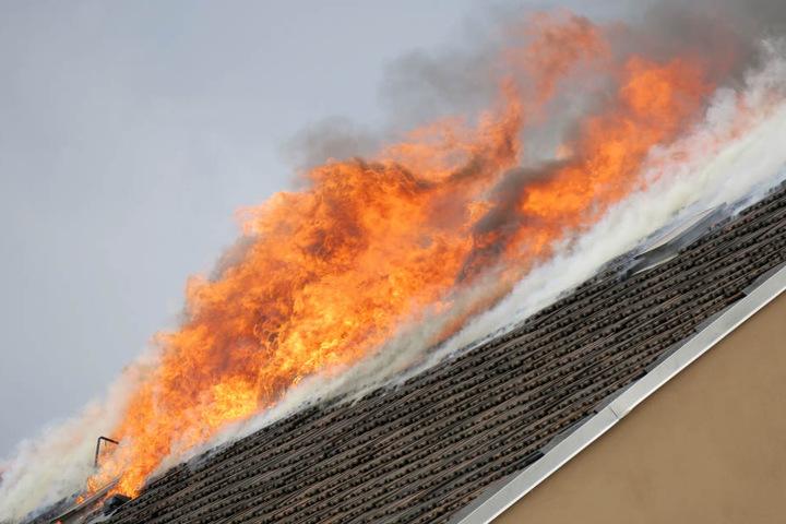 Nach knapp 90 Minuten konnte das Feuer unter Kontrolle gebracht werden.