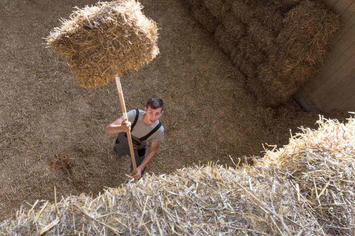 Geschicklichkeit gefragt: Berecki Gergely (16) aus Rumänien hat einen kleinen Strohballen aufgespießt, um ihn in 3,70 Meter Höhe zu werfen.