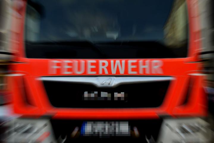 Hinweise auf eine vorsätzliche Brandstiftung lagen zunächst nicht vor (Symbolbild).