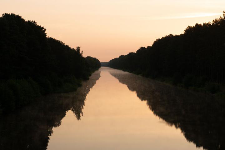 Schoon 2006 wurden Quallen in der Havel gesichtet. (Symbolbild)