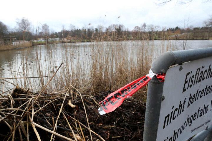 Der Geleitsteich in Planitz neben dem Strandbad. Hier wurde die Schülerin am Dienstagmorgen tot im Wasser entdeckt.
