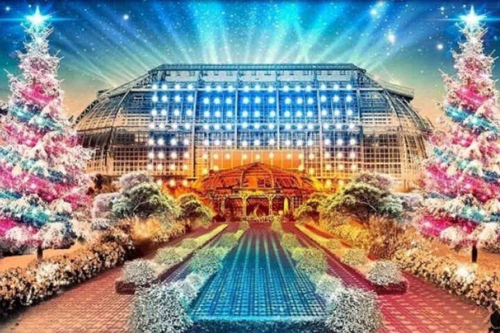 """Lasst Euch im Botanischen Garten Berlin vom """"Christmas Garden"""" verzaubern."""