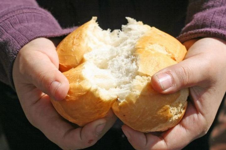 Mit Brotkrümeln lockte er die Hühner vom Gelände. (Symbolbild)