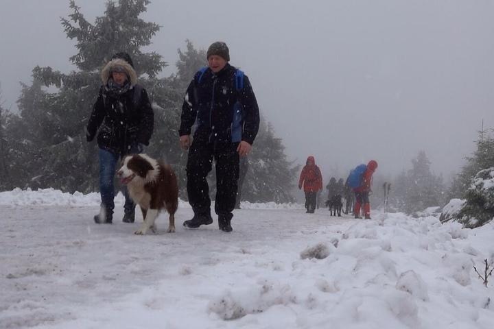 Bereits am ersten Weihnachtsfeiertag war Schnee auf dem Brocken gefallen. Zahlreiche Menschen strömten daraufhin auf den Berg.