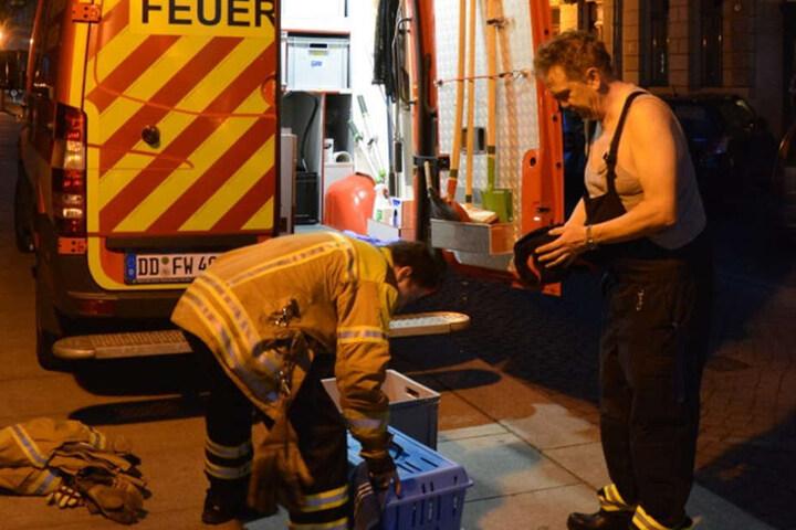 """Die Helfer rückten an, um das Tier zu befreien. Einer gab sogar """"sein letztes Hemd""""."""