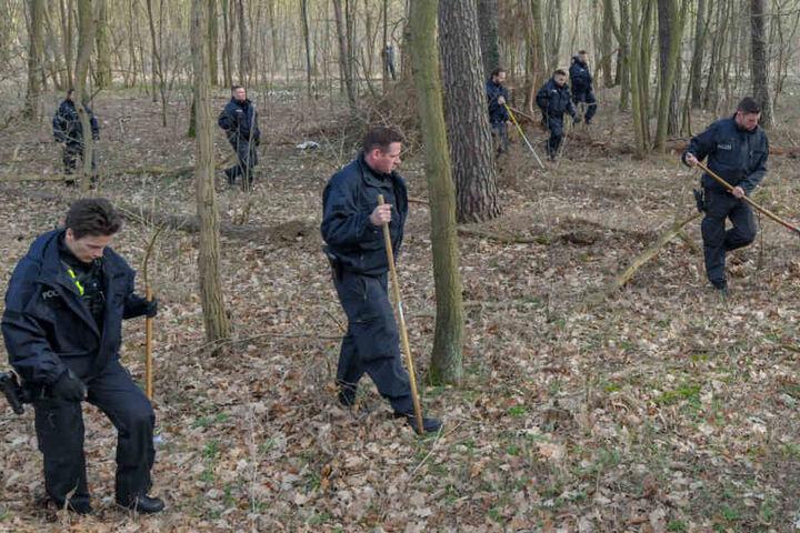 Polizisten durchforsten ein Waldstück bei Storkow.
