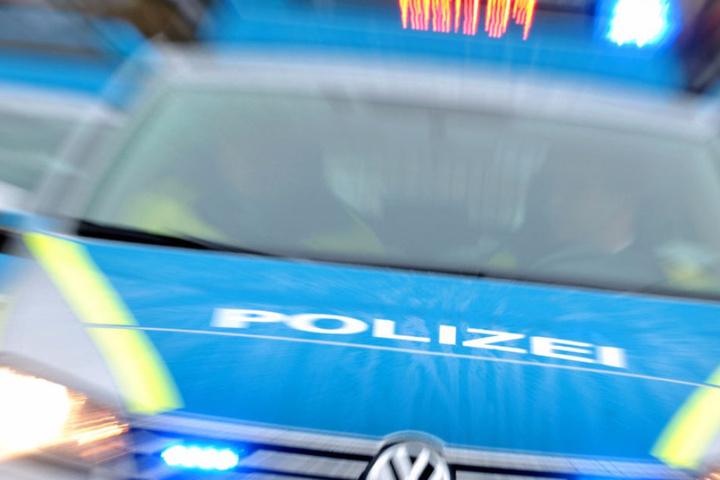 Seit zwei Tagen versucht die Polizei die Pfauen einzufangen. (Symbolbild)