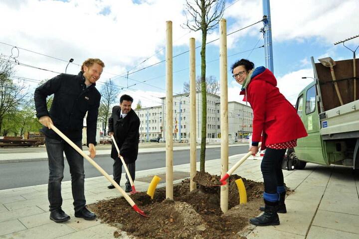 Den ersten Baum pflanzten Stadtteilmanagerin Katrin Günther (38), Baubürgermeister Michael Stötzer (44, Grüne) und CVAG-Vorstand Jens Meiwald gemeinsam.