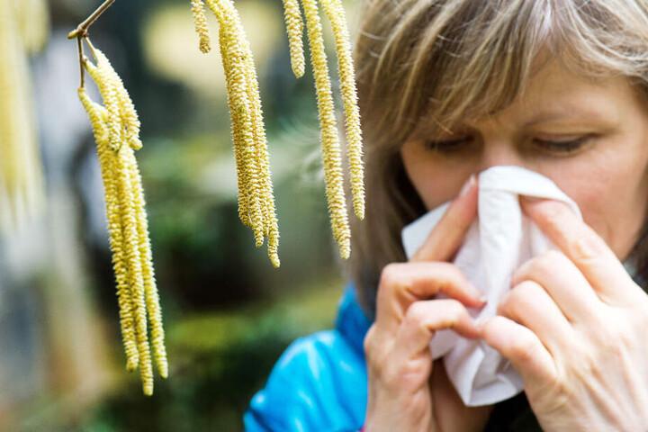 Ab zum Arzt! Unbehandelt kann sich eine Pollenallergie zu Asthma entwickeln. (Symbolbild)