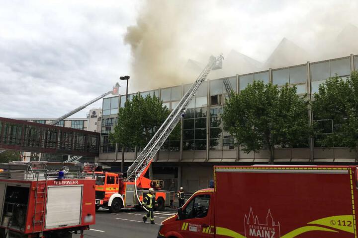 Das Feuer brach in der Dachkonstruktion der Halle aus.
