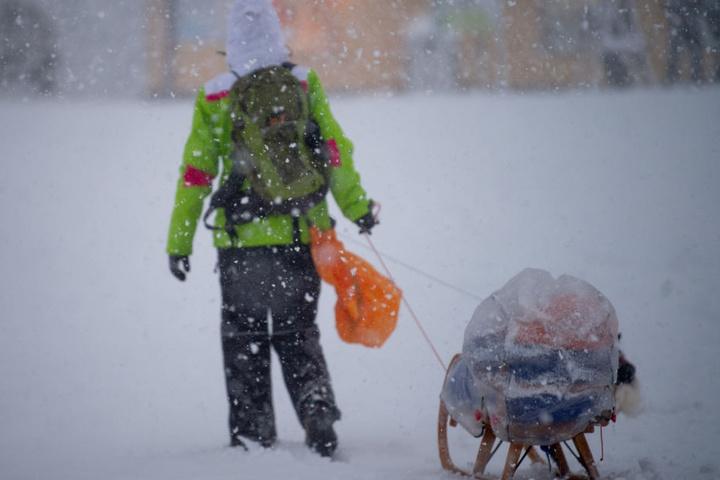Weiße Pracht in Altenberg: Auf den Straßen ist der Schnee festgefahren, am besten kommt man mit dem Schlitten voran.