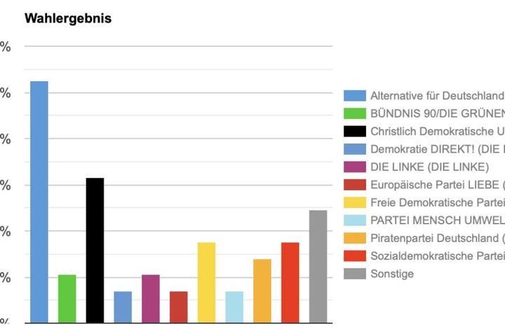 Jugendliche aus dem Landkreis Nordsachsen wählen die AfD.
