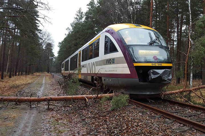 Immer wieder machten der Städtebahn umgefallene Bäume auf Gleisen zu schaffen. Die Deutsche Bahn pflege die Trassen nicht, so der Vorwurf seit Jahren.