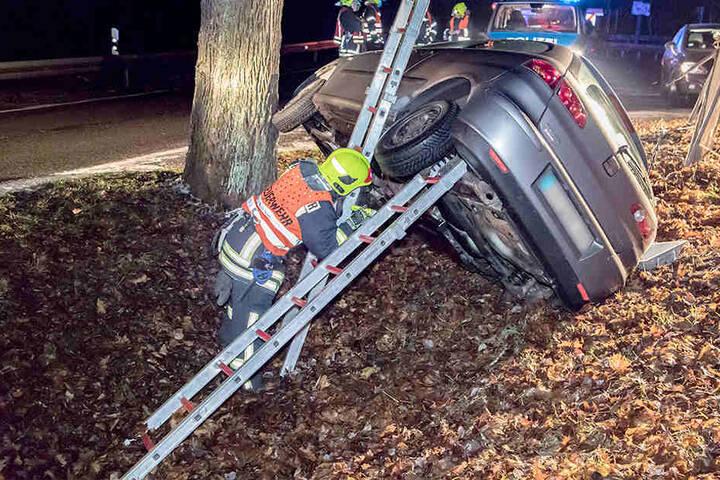 Da der Seat schräg am Baum stand, musste er durch Leitern abgestützt werden.