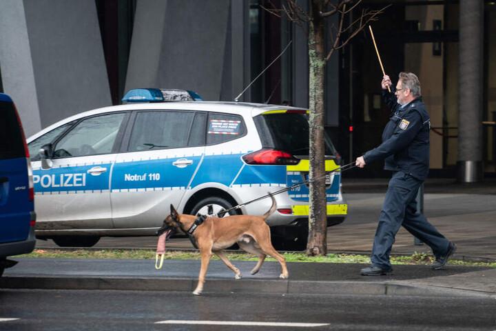 Ein Hundeführer mit einem Sprengstoffspürhund (Symbolbild).
