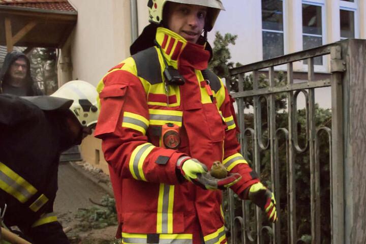 Der kleine Vogel konnte von der Feuerwehr gerettet werden.
