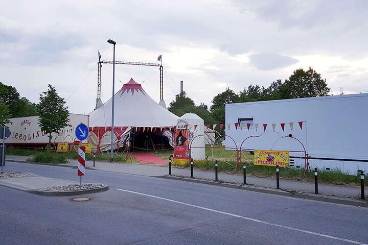 Jolines Unfall passierte bei der Donnerstags-Vorführung des Circus Piccolino in Klaffenbach: Ein Sicherungsseil riss.