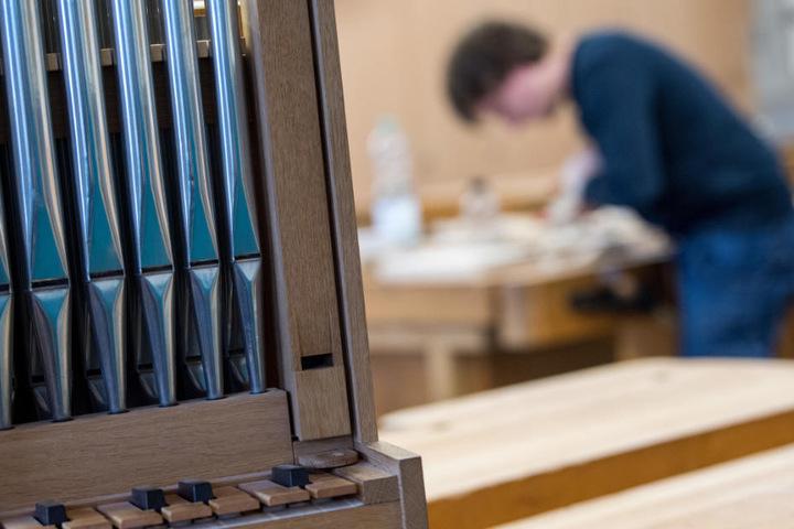 In Ludwigsburg befindet sich mit der Oscar-Walcker-Schule die einzige Berufsschule Deutschlands, in der Orgel- und Harmoniumbauer ausgebildet werden.