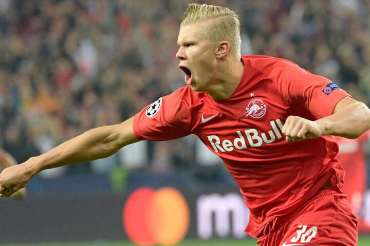 Erling Haaland glänzt mit starken Leistungen und trifft für RB Salzburg nahezu nach Belieben.