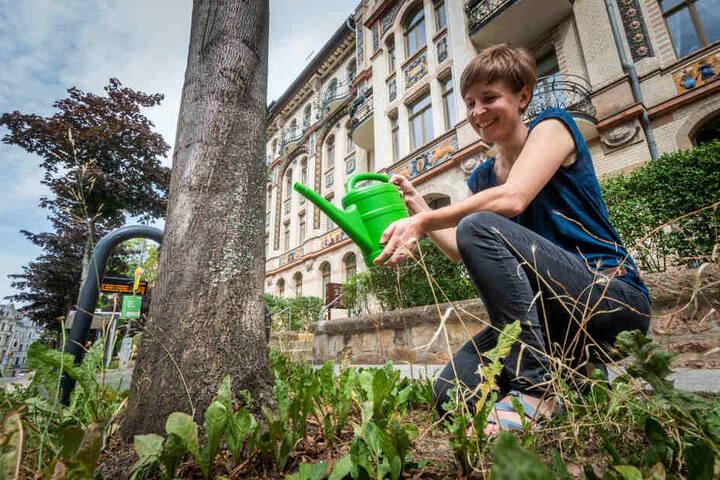 Auch Stadträtin und Kaßberg-Anwohnerin Susann Mäder (35, Grüne) ist beim Bäumegießen mit dabei.