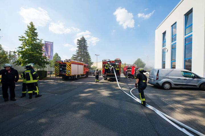 Gegen 16 Uhr wurde die Feuerwehr alarmiert.