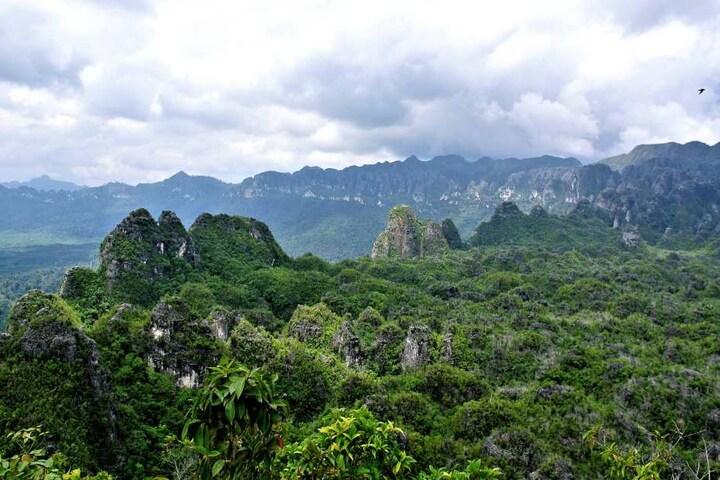 Blick über Felsen in der indonesischen Provinz Ostkalimantan. Hier gibt es Höhlen mit besonders alten Höhlenzeichnungen.