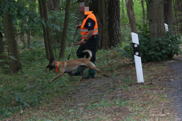 Polizisten sind am Dienstagnachmittag mit Leichenspürhunden in Brandenburg unterwegs.