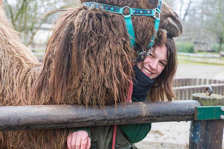 Tierpflegerin Lydia Dejong (31) mit Kamel-Jungtier Wahida, Zorans  Halbbrüderchen.