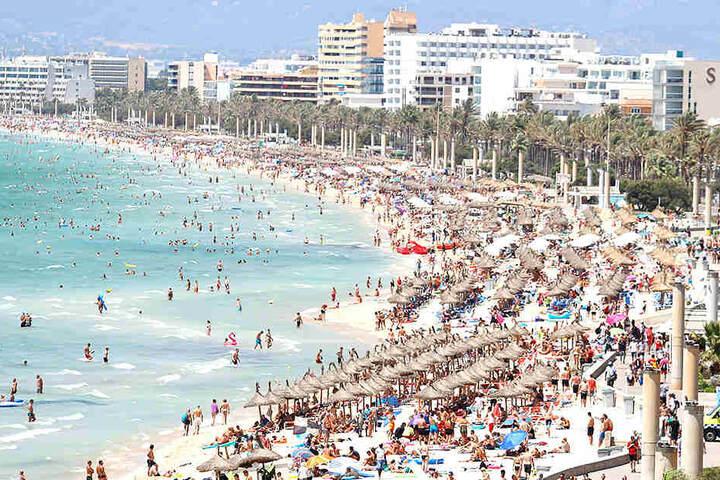 Für wenig Geld können Sachsen von der Landeshauptstadt Dresden bald ins Urlaubsparadies Mallorca fliegen.