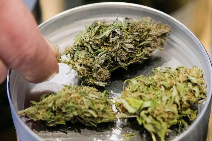 In der Unterhose eines Mannes fanden die Beamten Substanzen, die Cannabis ähnelten. (Symbolbild)